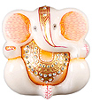 Beautiful White Marble ganesh statue painting
